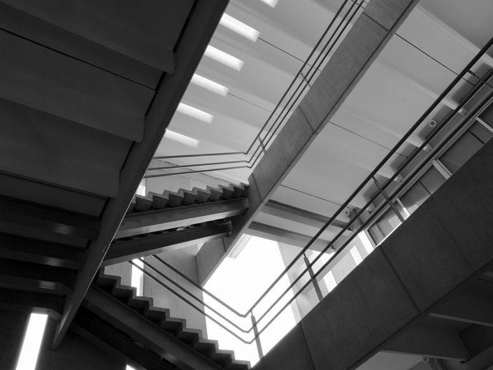 Universidad  Marista Edificio Arquitectura